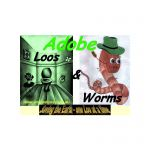 Adobe Loos & Worms